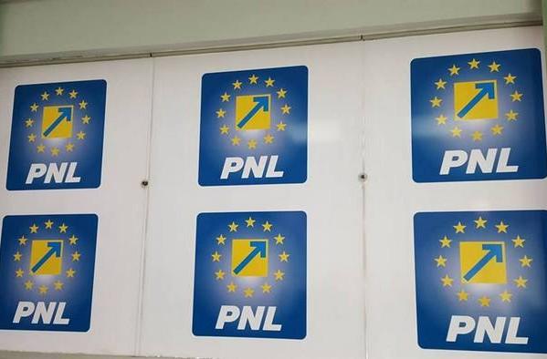 """PNL DÂMBOVIŢA: """"PSD PROMITE, PNL FACE"""""""