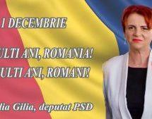 DEPUTAT CLAUDIA GILIA, MESAJ DE ZIUA NAŢIONALĂ