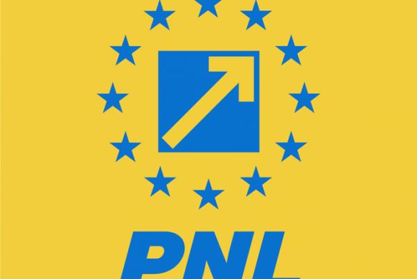 """PNL DÂMBOVIŢA ACUZĂ: """"FAMILIA PLUMB, CU OCHII PE BANII PUBLICI"""""""