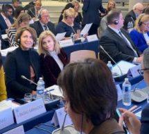 OANA VLĂDUCĂ, DEPUTAT PRO ROMÂNIA, ÎN DELEGAŢIA PREZENTĂ LA REUNIUNEA CONSILIULUI PARTIDULUI DEMOCRAT EUROPEAN (EDP)